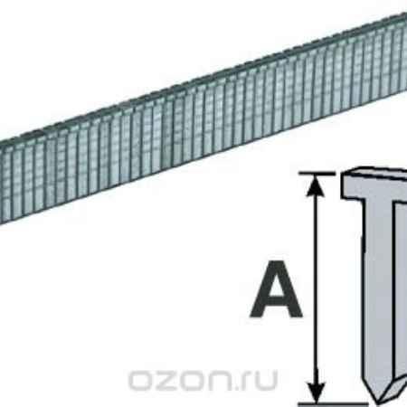 Купить Скобы-гвозди Fit, 8 мм, 1000 шт. 31238