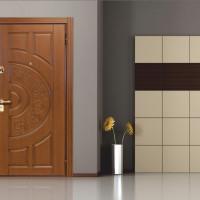 Виды входных дверей в квартиру